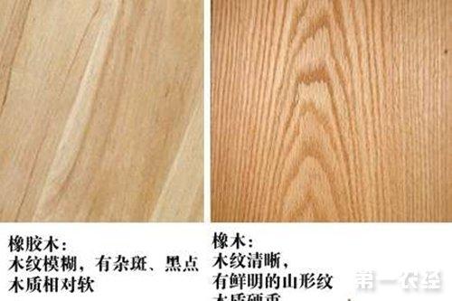 橡胶木和橡木有什么区别?【植物介绍】