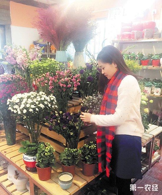 """等传统品类也颇受市民欢迎。   """"现在技术发达了,运输便捷了,年宵花的品种更加丰富。""""一位花店老板表示,不少""""洋花""""也实现了国产化,不再需要进口,基本上每家花店都有上百种花卉,充分满足市民需求。   价格   花店将重心放在家庭消费上   今年年宵花主要走平价路线   前几年,春节之前年宵花涨价,似乎已经成为一种规律。但受""""八项规定""""影响,全社会节俭成风,今年的新春花市价格并未明显上涨。一大把满天星108元、一大盆蝴蝶兰618元、一大"""