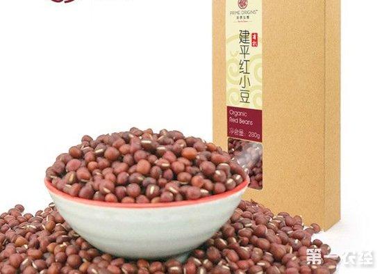 辽宁朝阳西建平特产:红小豆(图片)