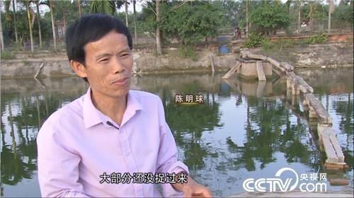 """海南屯昌:""""龟痴""""发龟财  陈明球成千万富翁"""