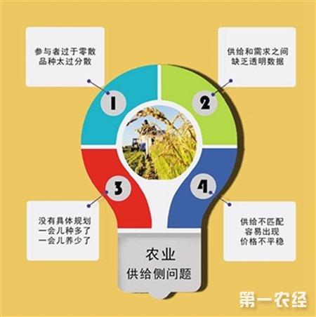 农业供给侧结构性改革