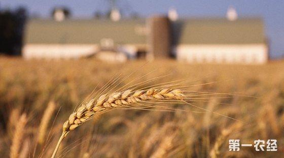 推进农业供给侧结构性改革对农业发展提出了新的任务