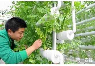 山西筹措资金促进农业科技成果转化