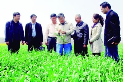 黑龙江组织农产品市场活动为农民春耕生产提供指导