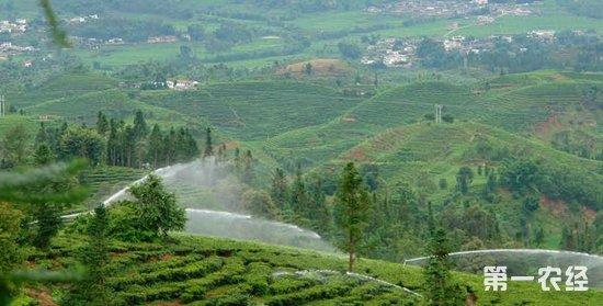 南宾川发展高效节水灌溉 缓解农业用水矛盾