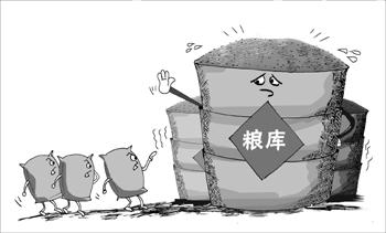 2015年黑龙江省政策性粮食收购总量再创新高