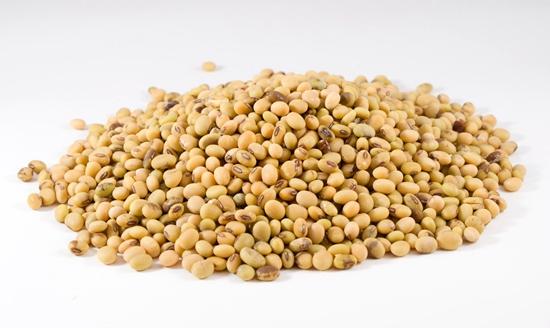 如何提高大豆种子增产潜力?