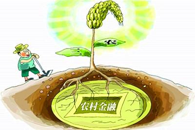 """结合产业结构,进行""""接地气""""的农村金融改革"""