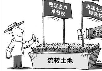 """农村土地规模经营""""适度""""与""""发展""""并行"""