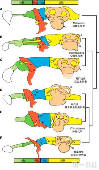 北海道地图鱼类