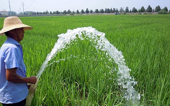 农作物防范高温热害方法