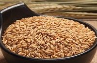 宁夏固原特产燕麦 营养价值高