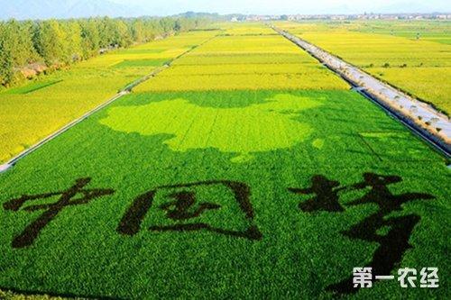 农业经济_农经大热点 农业经济发展需调整的几个方向