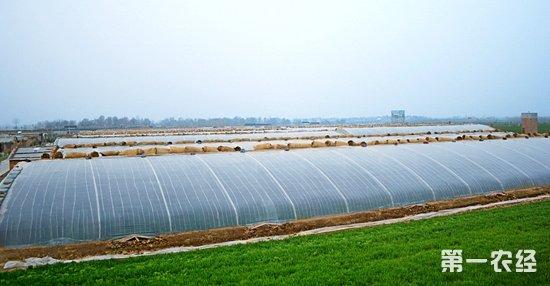 设施农用地政策有关问题解读