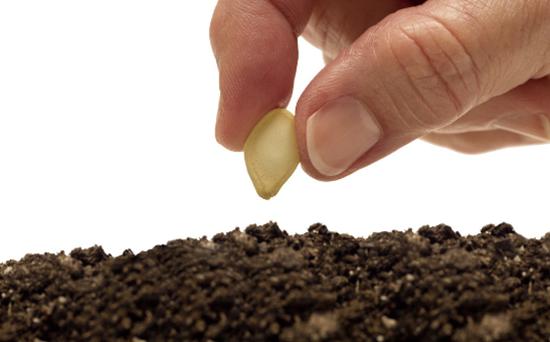 农业部解读《农作物种子生产经营许可管理办法》