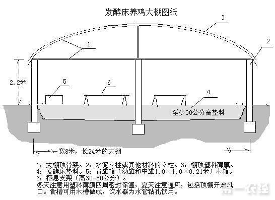 发酵床养鸡技术大棚设计图