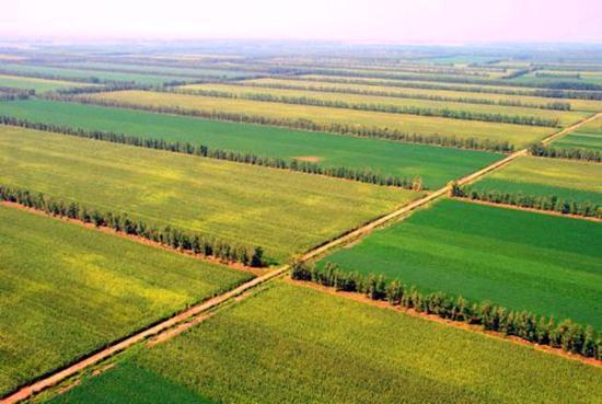 国土部解读:以补改结合方式落实耕地占补平衡