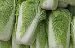 夏季大白菜病虫害趋势预测