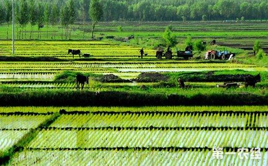 农村集体产权制度改革全面提速