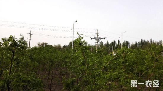 大疆植保无人机MG-1新疆植保作业的效果分析