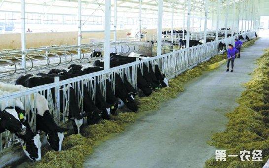 农业部解读《全国草食畜牧业发展规划》