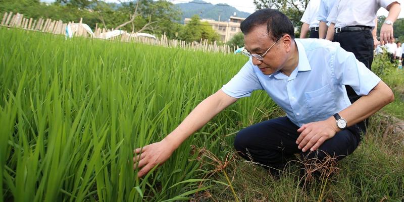 李克强江西考察 沿途了解粮食生产情况