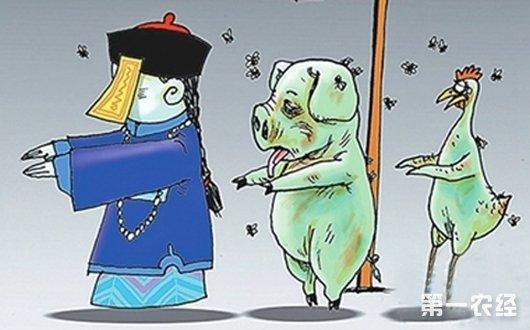 安徽宿州:一检疫站长受贿放行僵尸肉被判刑