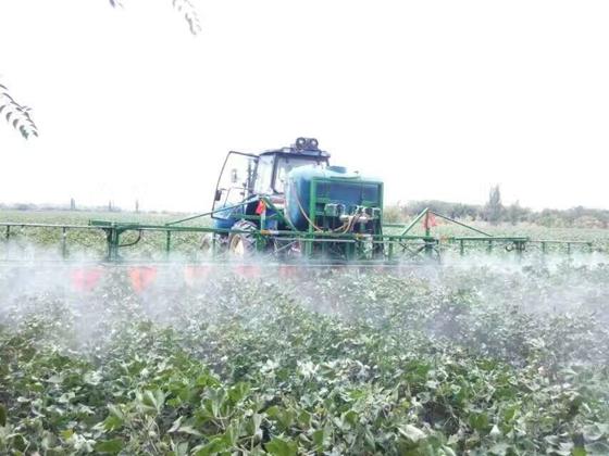 新疆兵团第八师一四九团全面开始棉花脱叶剂喷施工作