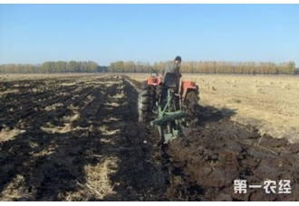 秋翻稻田地的好处与技术要点