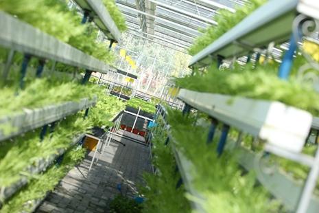 江苏:精准智能为农业增添新动力