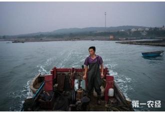 中国传统渔村濒临消失 因过度捕捞建度假村