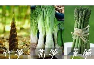 竹笋、莴笋和芦笋这三者有什么区别?