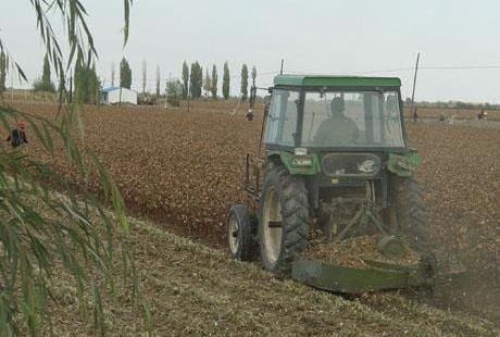 新疆兵团第八师一四九团棉花备耕工作全面展开