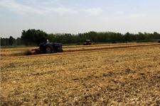 小麦秸秆还田技术指导手册