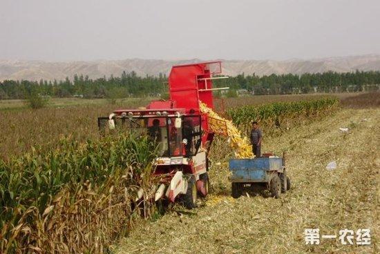 玉米联合倒车影像接线图
