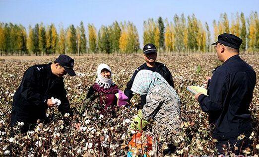 新疆八师149团农业二区安全教育不留白