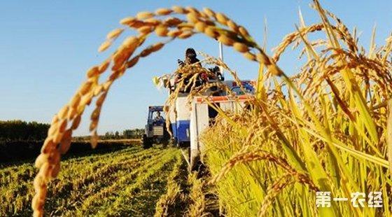 宁夏石嘴山市2016年政策性农业保险增加到20个