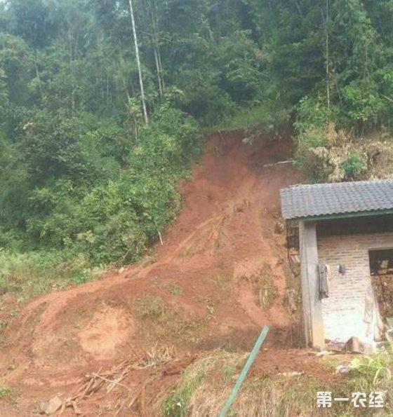云南泥石流致2人死亡,强降雨引发洪涝致400人受灾