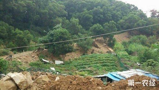 福建印发土壤污染防治行动实施方案 确保农产品产地安全