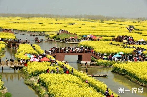 江苏省泰州市投资一亿元助力农业开发