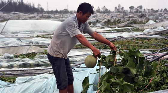 海南省获中央自然灾害生活补助资金4000万元