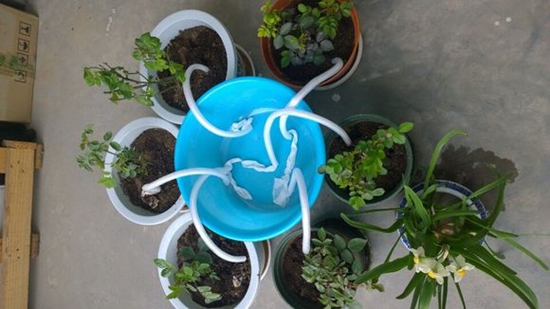 自动盆栽花卉浇水器怎么制作?跪求解决方法!