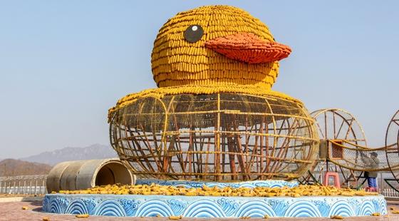 辽宁丹东:农民用玉米拼装大黄鸭迎冬