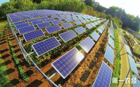 7,光伏农业大棚      光伏农业大棚是集太阳能光伏发电,智能