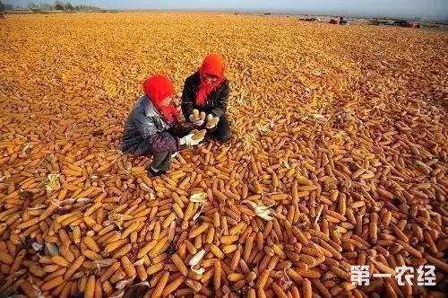 北京怀柔共需发放粮食补贴资金671.2万元