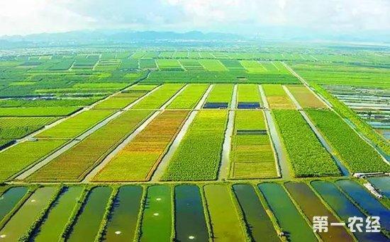 支持两地农业科技人才领办创办经营实体,合作促进农业科研成果转化