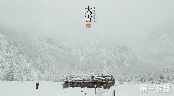 北京:今天进入大雪节气 周末雾霾将再度来袭