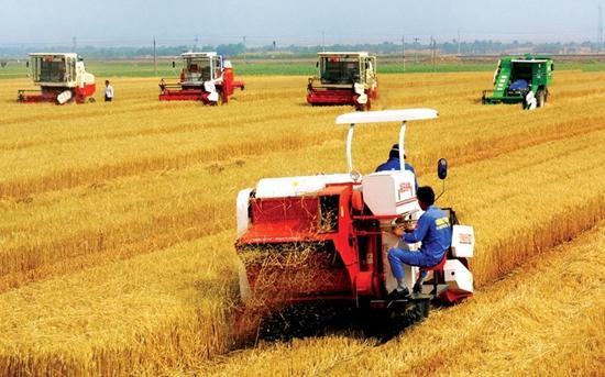 湖南将实施洞庭湖区农业机械化提升工程