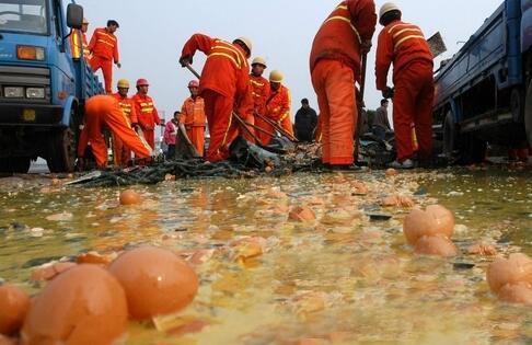 <b>上海:17吨鸡蛋在高速公路上翻车 引起高峰段堵车</b>