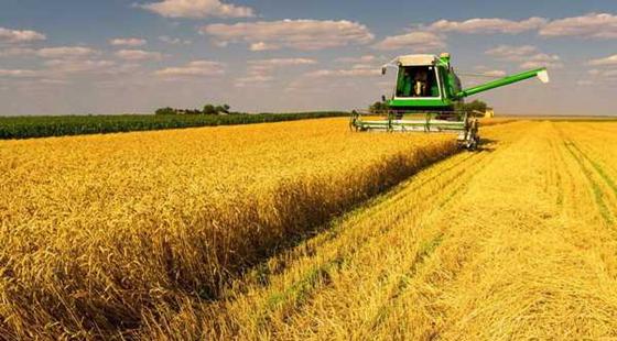 全国最大农垦区在绥化、哈尔滨启动改革试点